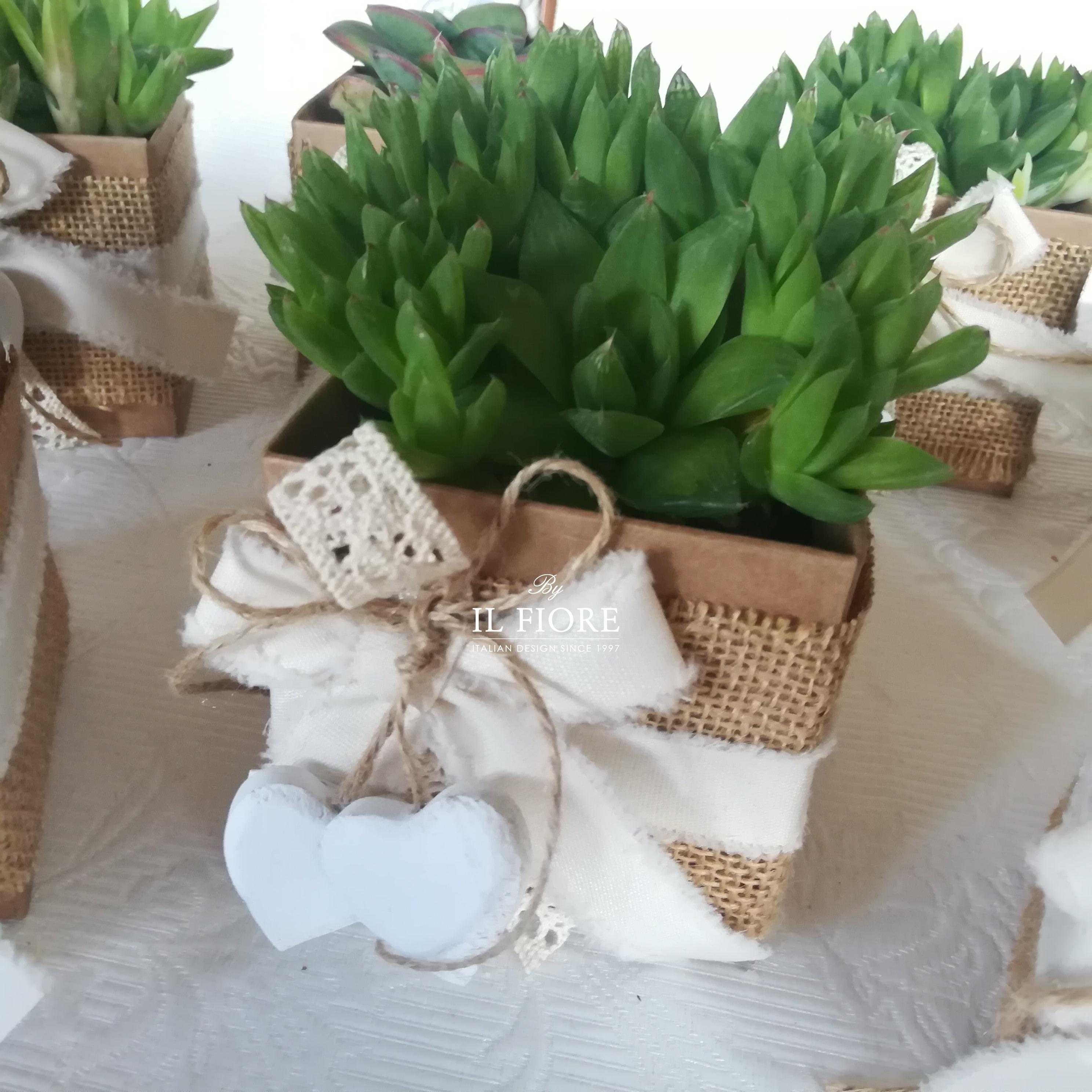 Bomboniera Green con piantine grasse thumb cover